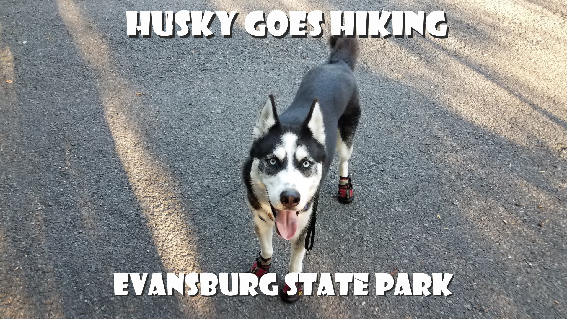 Evansburg State Park Video